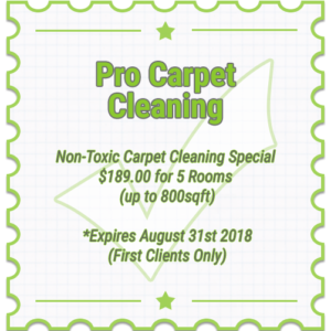 2018 Carpet cleaning